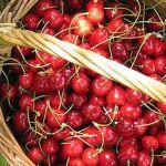 Čerešne na prevenciu zápalu krvných ciev