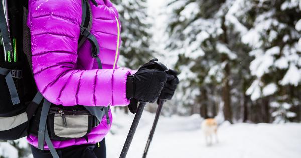 Kupovať dámske zimné bundy nemusí byť utrpenie: Toto si všímajte pri výbere!